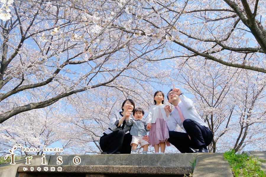 狭山市いりそ写真館の桜フォトキャンペーン